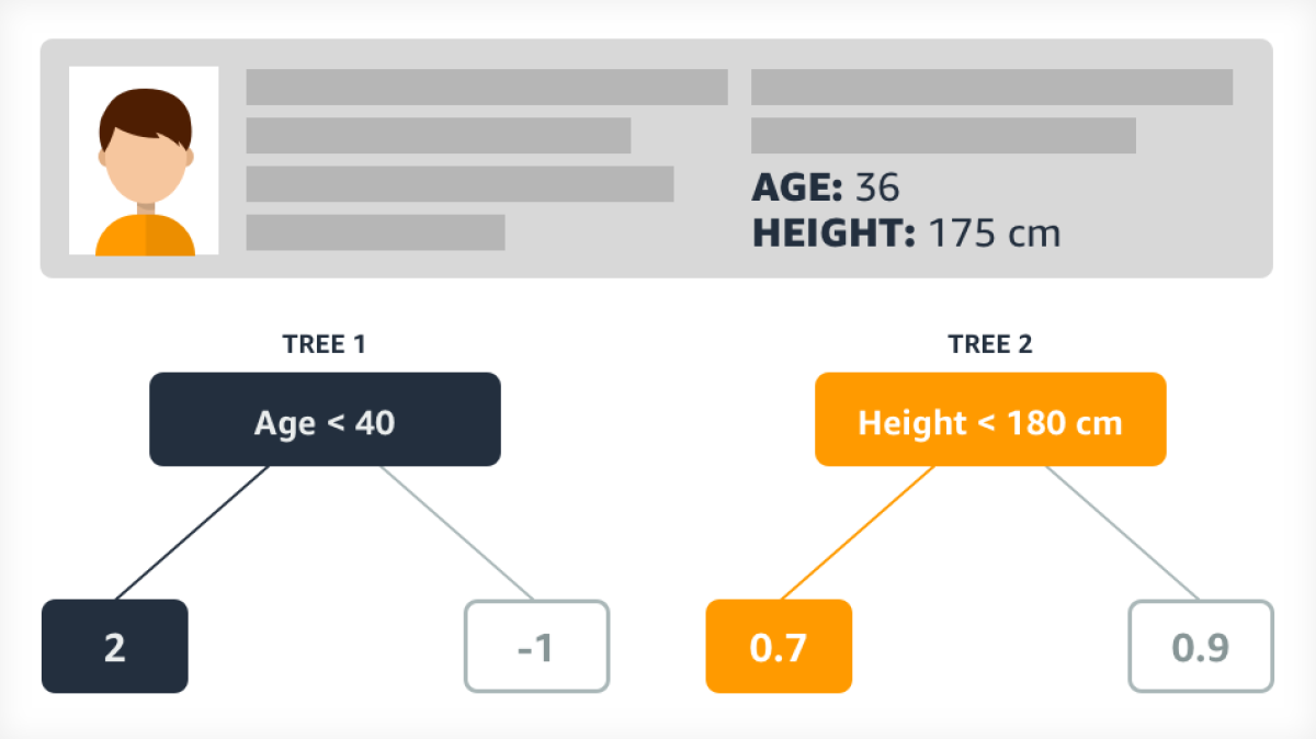 A model consisting of two decision trees, one that imposes an age criterion and one that imposes a height criterion.