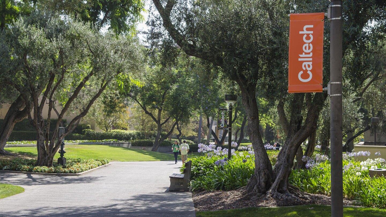 Caltech banner image